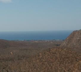 Pescadero Cabo San Lucas
